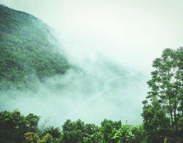 Mây giăng đỉnh đèo Hải Vân 01
