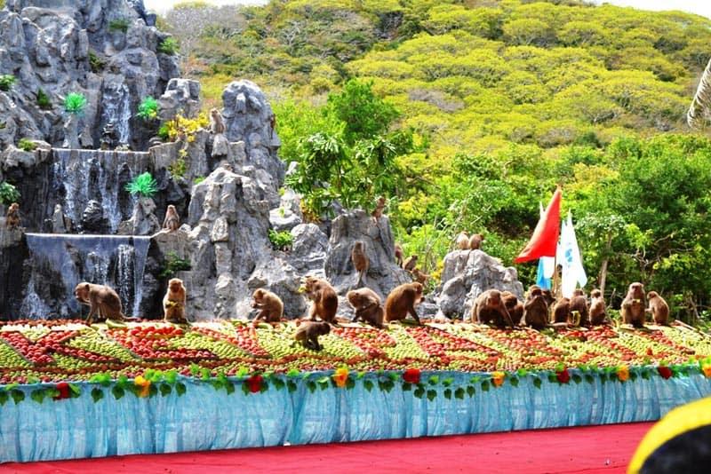 Du lịch khám phá đảo khỉ Nha trang nét đẹp cảnh nha trang