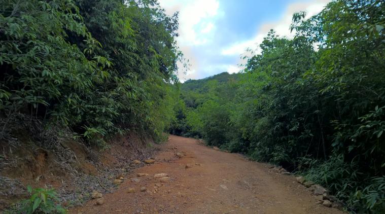 Đường leo lên núi Dinh