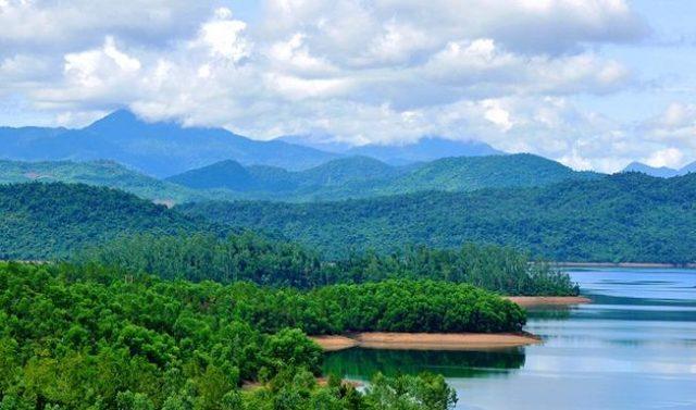 rừng cây hồ Phú Ninh