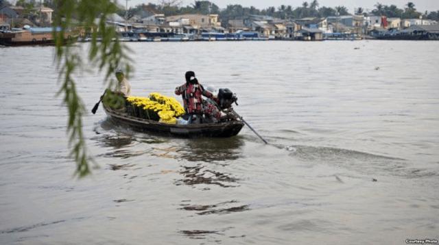 Cảnh chợ tập lập bến Ninh Kiều, Cần Thơ trên sông nước