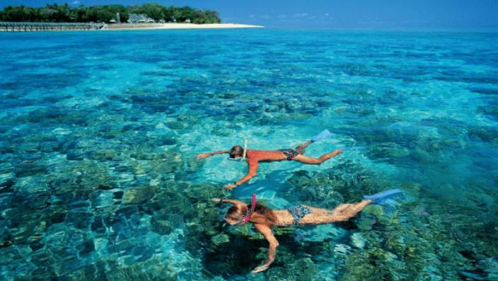 Ngắm san hô tuyệt đẹp tại Hòn Thơm