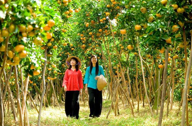Miệt vườn Tiền Giang (Ảnh sưu tầm)