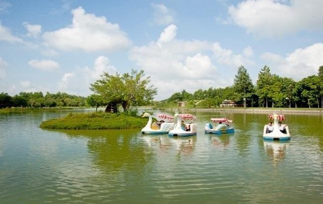 Dịch vụ đạp thiên nga và chèo thuyền kayak