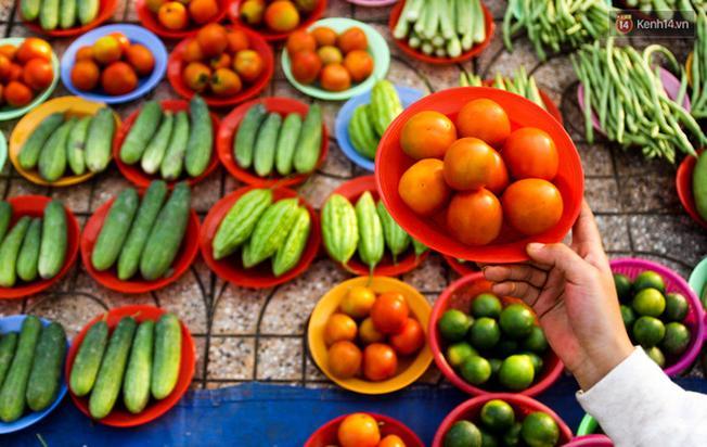 Cà chua 8 trái được lựa chọn rất đều nhau