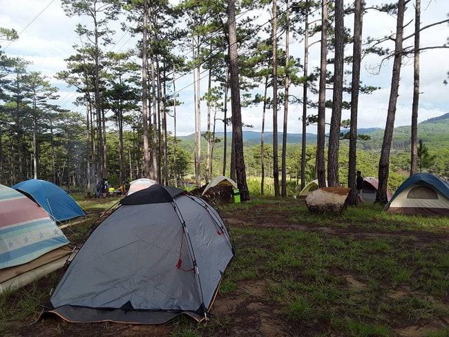 Khu vực cắm trại ở sở thú Zoodoo Đà Lạt