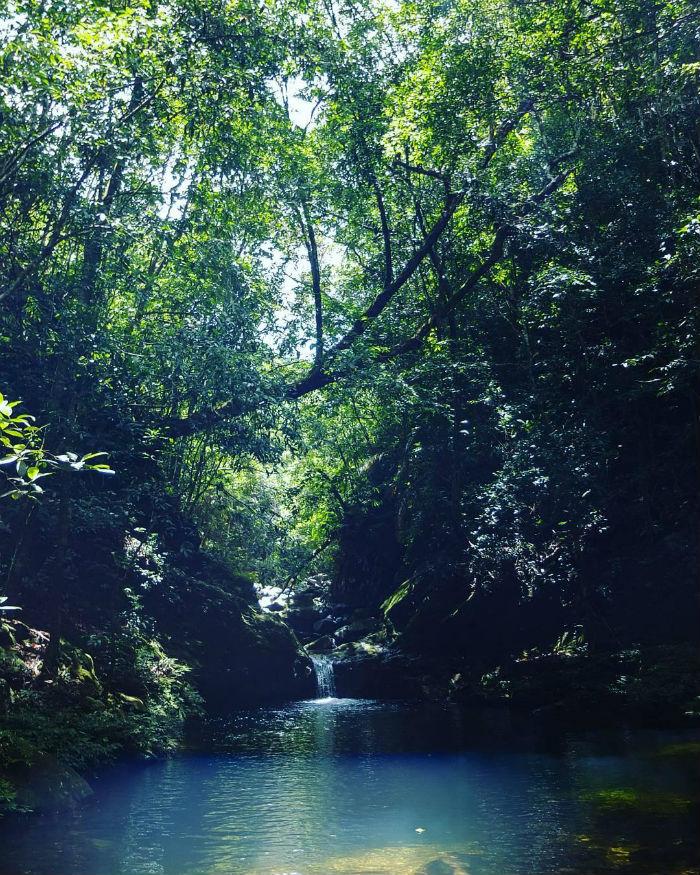 Ngũ Hồ: Vườn quốc gia Bạch Mã
