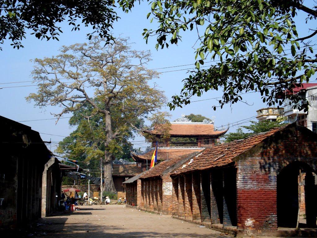 làng Nôm
