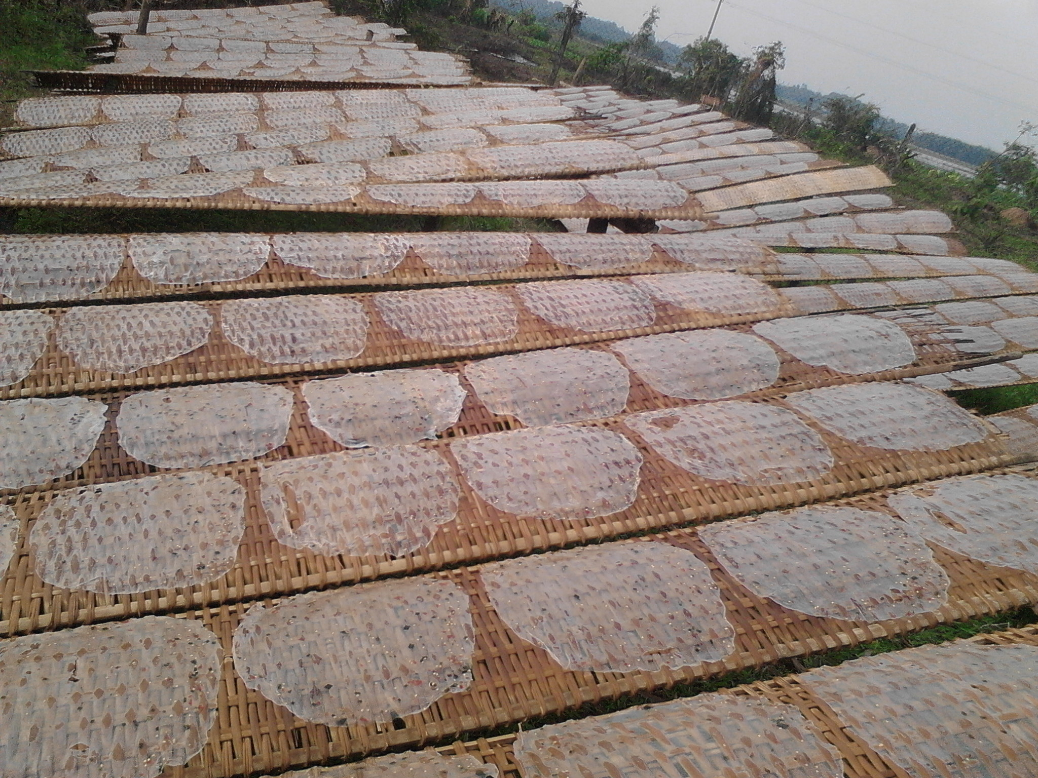 Phơi bánh tráng - bánh tráng tôm Tây Ninh