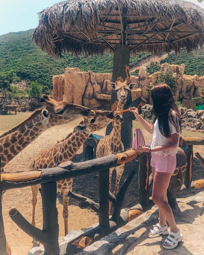 Công Viên sở thú Vinpearl