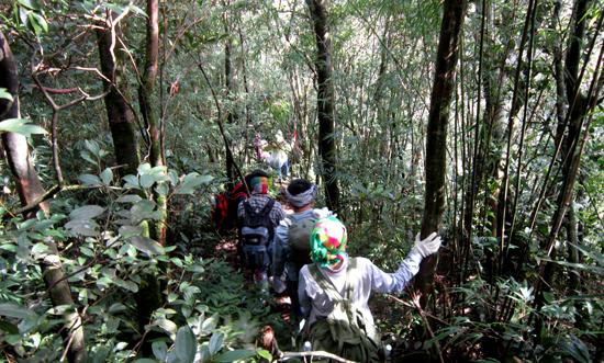 trải nghiệm thú vị khi leo núi Tam Đảo