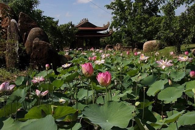 khung cảnh khu du lịch Long Điền Sơn