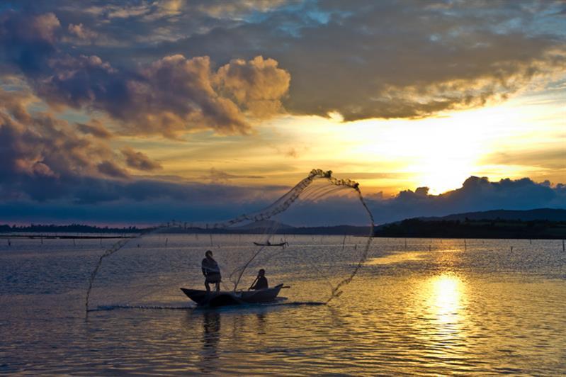 Binh Minh Dam O Loan