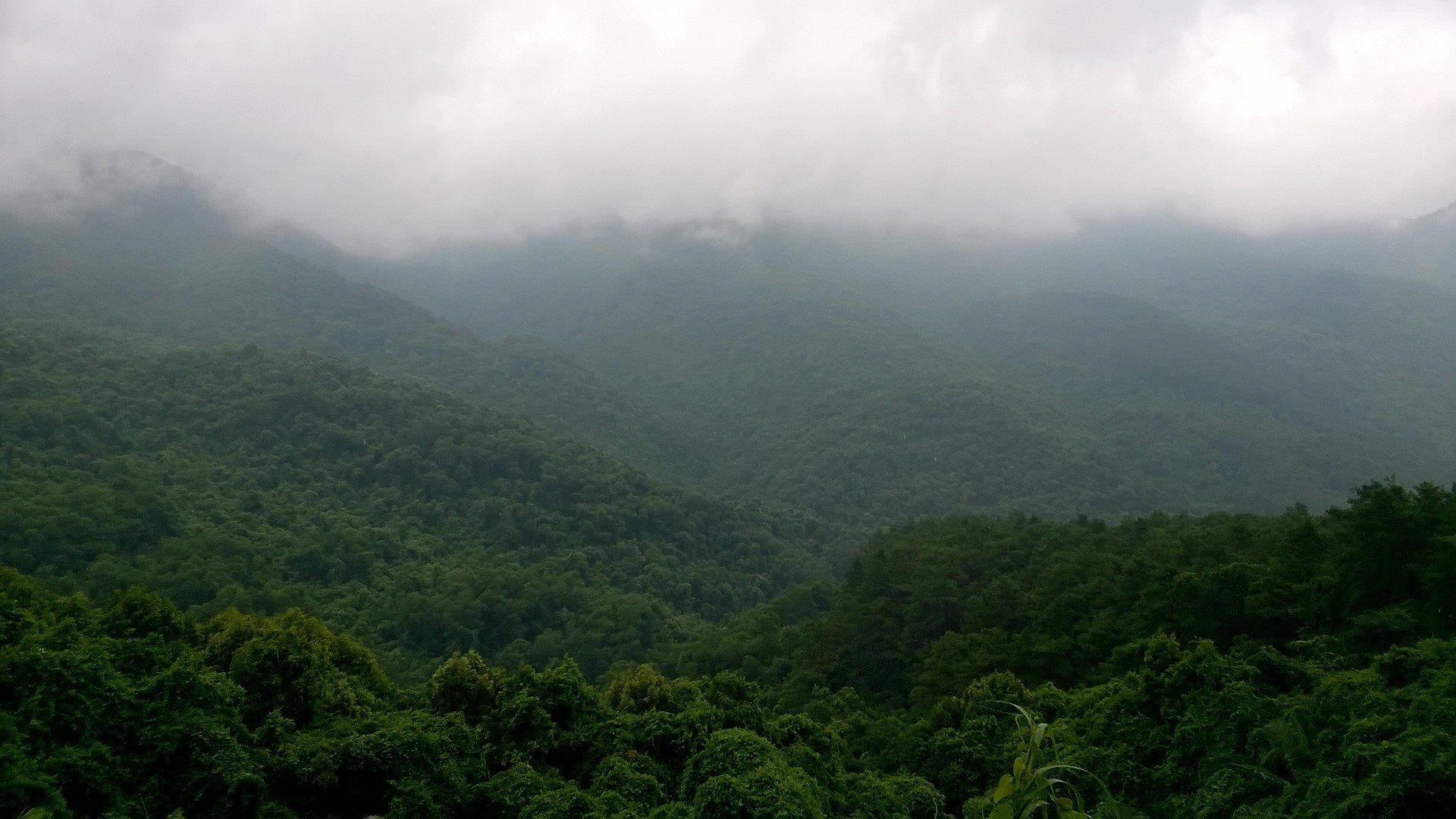 sương mù Tam Đảo - du lịch Tam Đảo tự túc 9