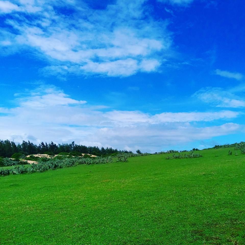 bãi cỏ du lịch Phú Yên