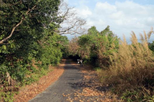 Đường đến ngọn hải đăng Nam Du