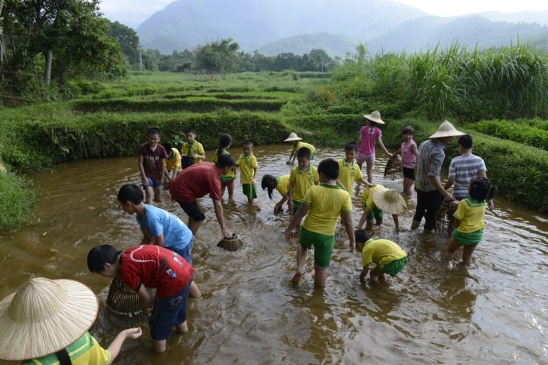 hoạt động bắt cá tại trại bò giống Ba Vì