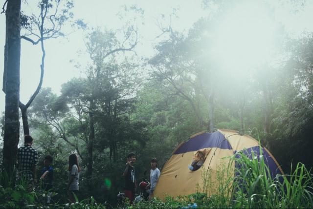 Vườn Quốc gia Tam Đảo - cắm trại ở Tam Đảo