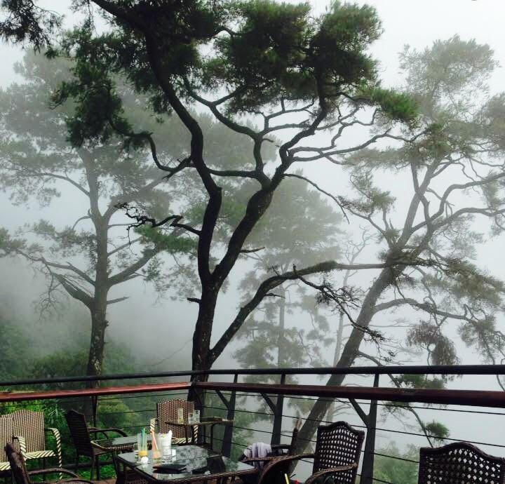 Quán gió Tam Đảo chìm trong sương mù