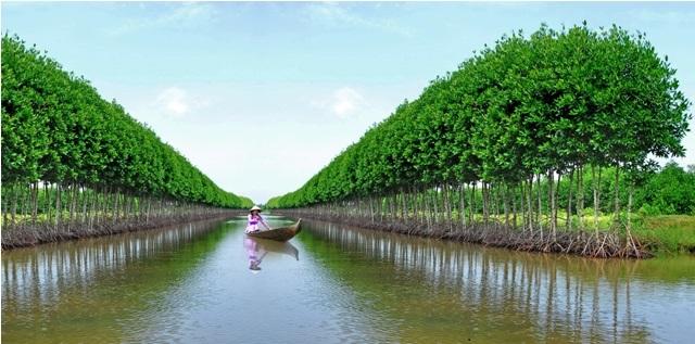 Du lịch bụi sông nước Cà Mau