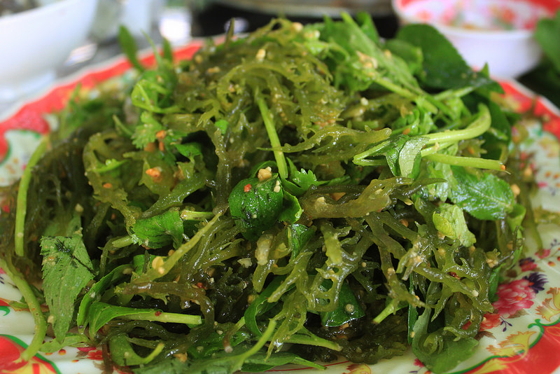 Seaweed salad to eat cool (Source of collection)