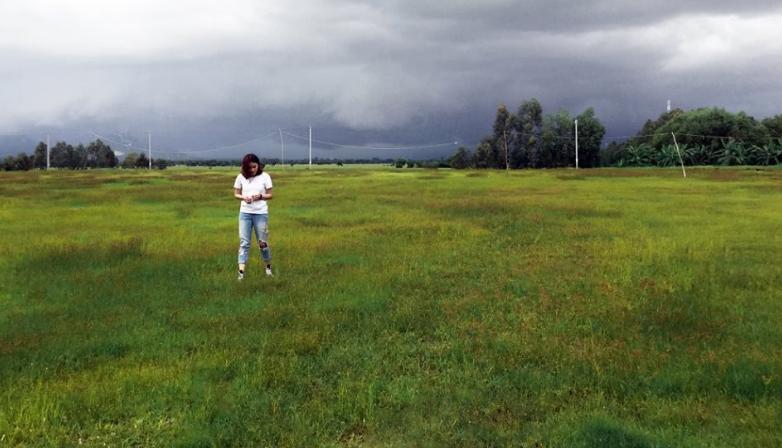 Khu đất trống với nền cỏ xanh rì