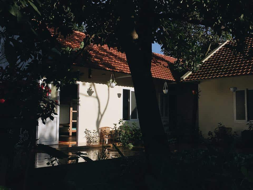 Bơ House