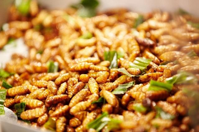 Nhộng ong