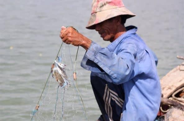 Ngư dân đánh bắt cá trên đảo hàng ngày