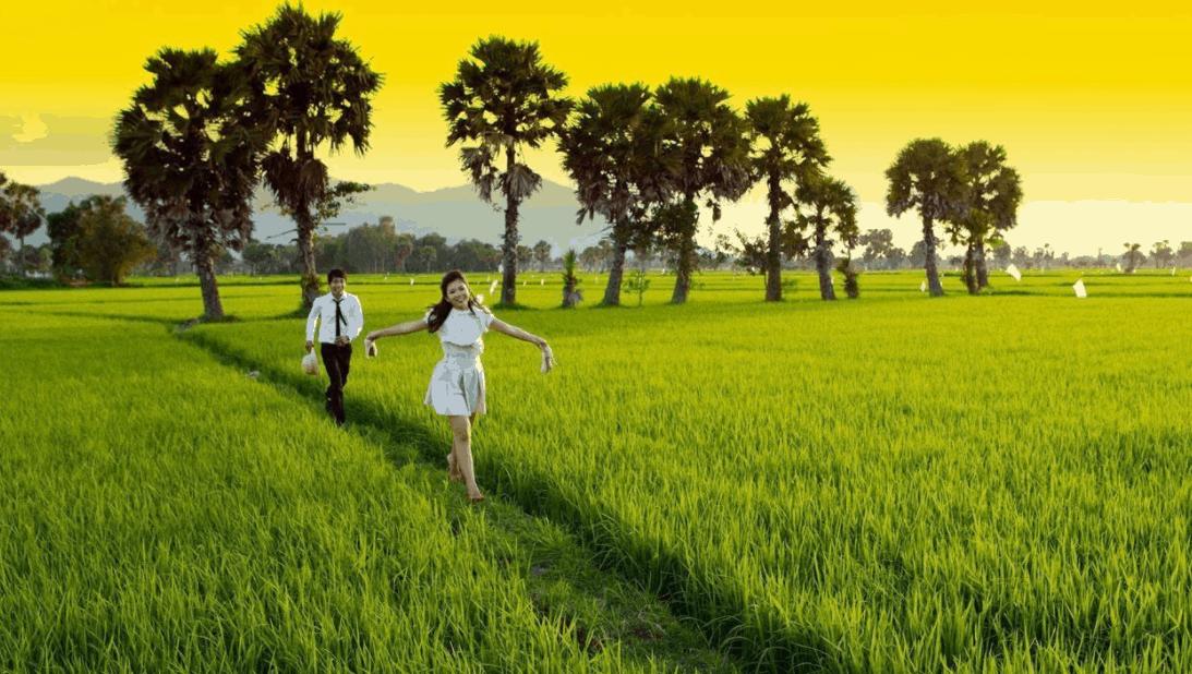 Dạo chơi trên cánh đồng Tà Pạ