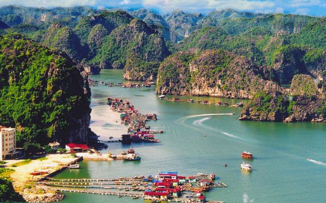 Kinh nghiệm du lịch Cát Bà 2020 siêu chi tiết - Vntrip.vn