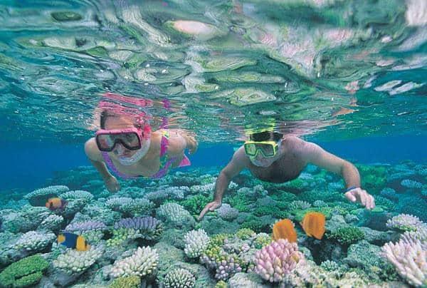 Lặn ngắm san hô (Ảnh: ST)