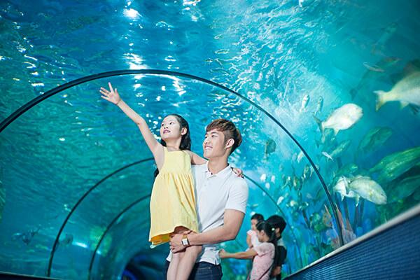 Khu vui chơi Times City – thiên đường giải trí hấp dẫn ở Hà Nội