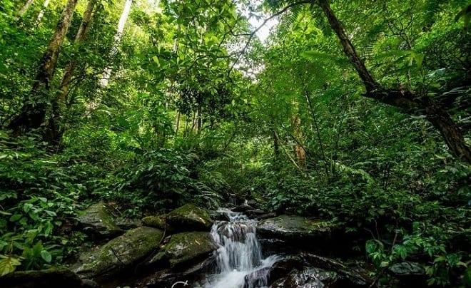 Pù Mát với vẻ đẹp thiên nhiên đậm chất hoang sơ