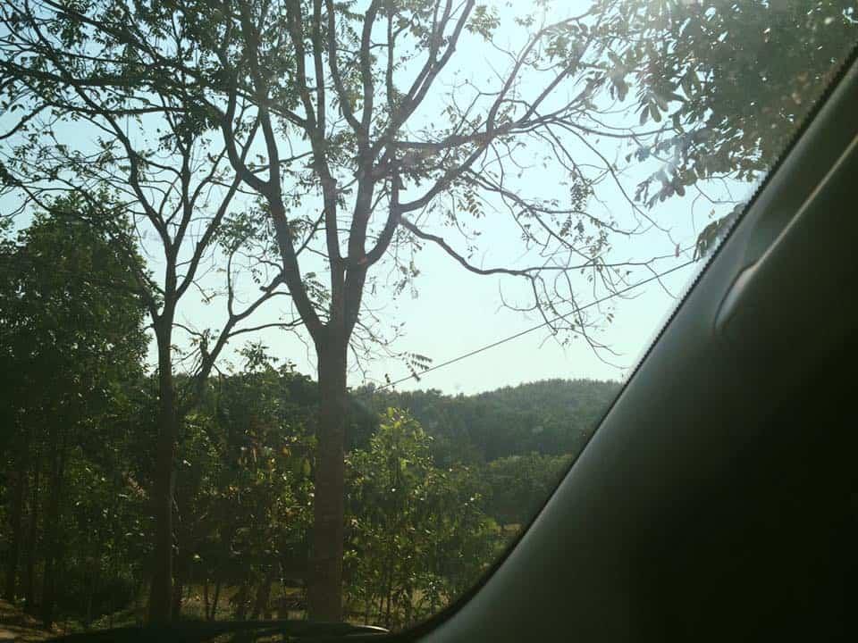 Cảnh thiên nhiên dọc đường về tại Bến En