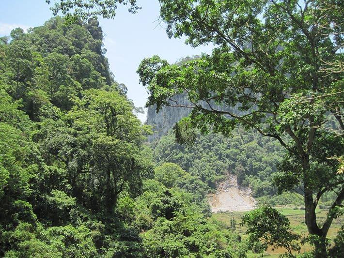 Thiên nhiên trên đảo Ngọc tại Vườn quốc gia Bến En