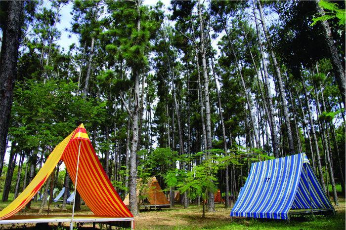 Những túp lều cắm trại qua đêm tại Bến En Thanh Hóa