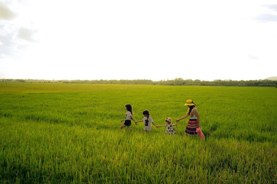 Mô hình nông nghiệp kết hợp khu du lịch sinh thái - trải nghiệm (Ảnh: Sưu tầm)