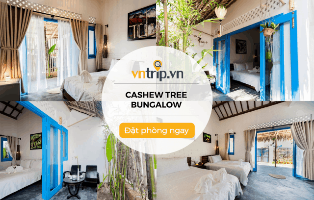 Cashew Tree Bungalow Homestay Hội An