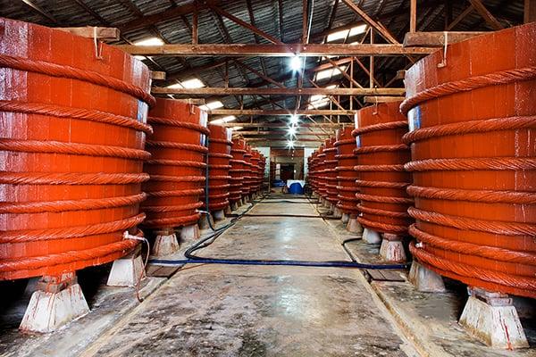 Những nhà thùng sản xuất nước mắm luôn là địa điểm tò mò của khách du lịch (Ảnh: ST)