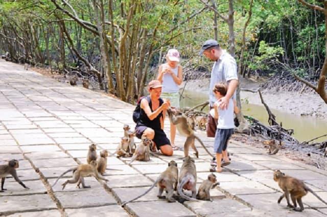 Đảo Khỉ là một trong những điểm đến hấp dẫn du khách khi đến với Cần Giờ (Ảnh sưu tầm)