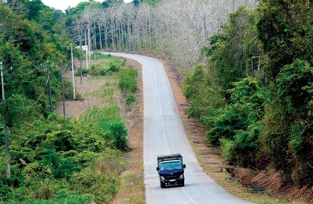 Đường đến rừng Chàng Riệc (Ảnh: ST)