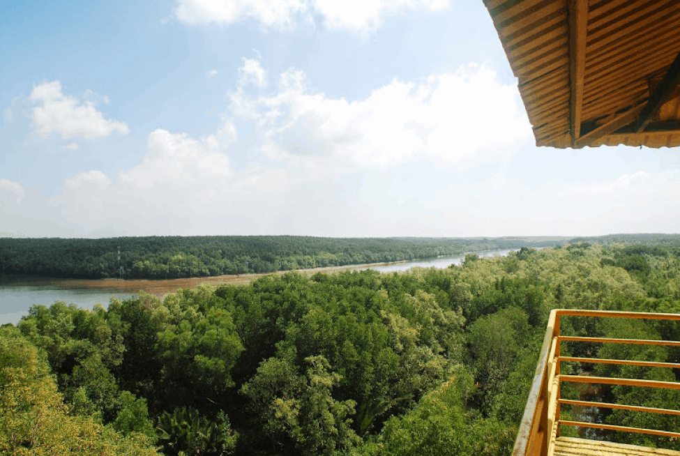 Cảnh sông nhìn từ Tháp Tang Bồng (Ảnh: Sưu tầm)
