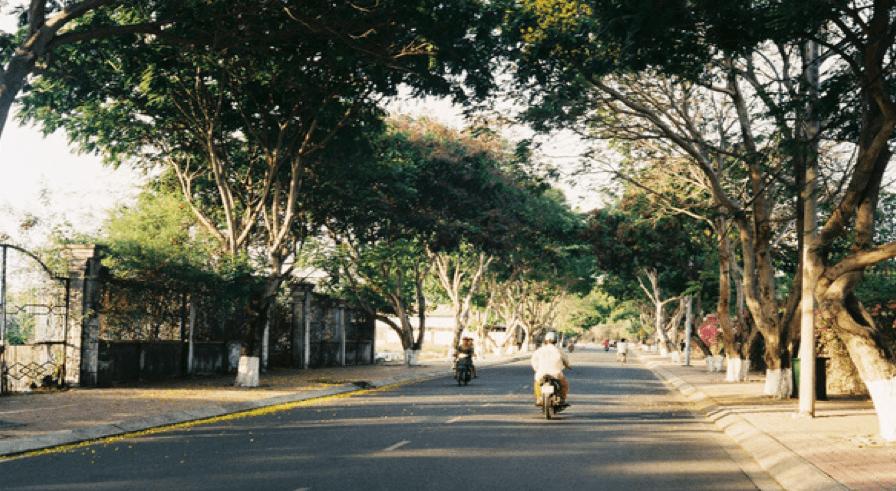 Con đường rợp bóng cây mát ở thị trấn ngoại ô Cần Thạnh (Ảnh: Sưu tầm)