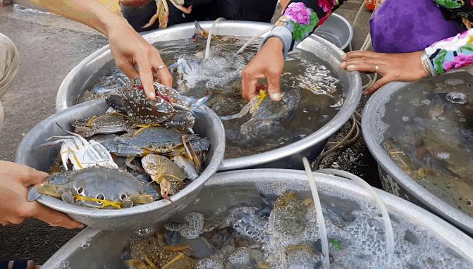 Những vựa hải sản tươi ngon
