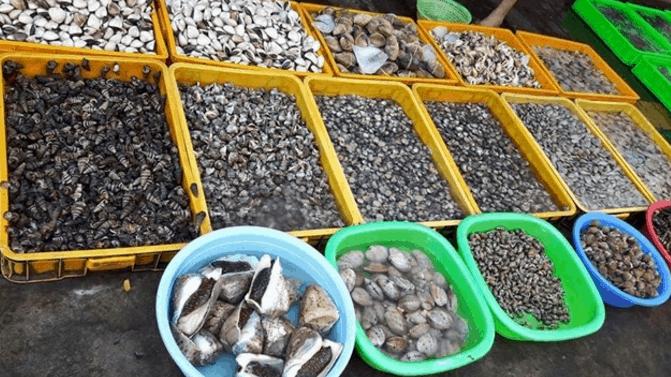 Chợ hải sản Cô Giang