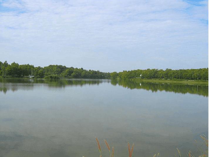 hồ Mang Cá