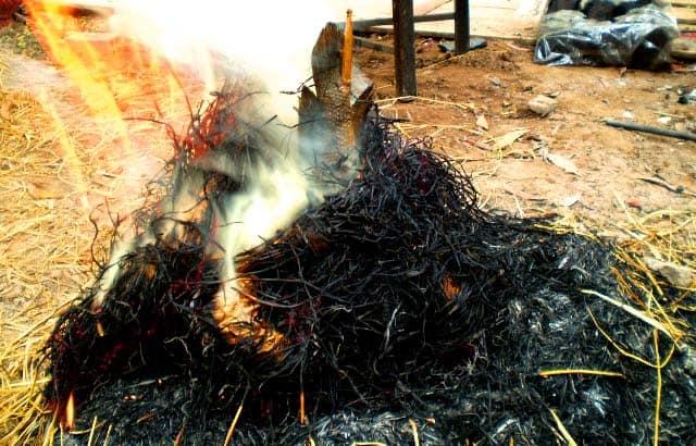 Rơm giữ được hương thơm riêng của cá lóc nướng trui ở Sài Gòn (Ảnh: ST)