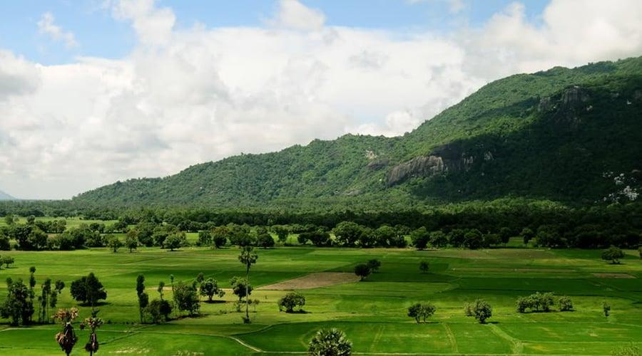 Núi Sam An Giang Châu Đốc được bao phủ bởi màu xanh của bạt ngàn cây cối (ảnh sưu tầm)