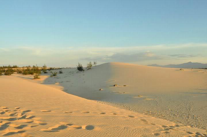 Cồn cát Quang Phú 02